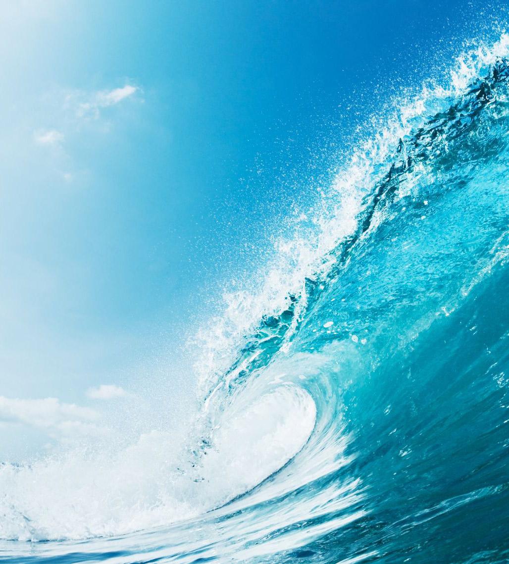 C'est plus agréable d'aller sur un spot de surf quand on sait qu'il y a des vagues !