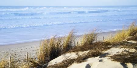 Météo des vagues et surf report sur le spot de surf de  Carcans Plage à Carcans, Gironde